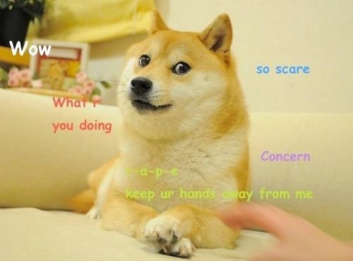 画像出典: Doge (meme) - Wikipedia
